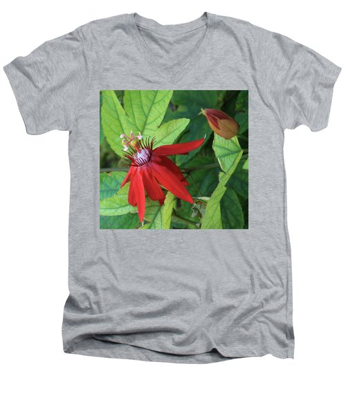 Red Passion Bloom Men's V-Neck T-Shirt by Marna Edwards Flavell