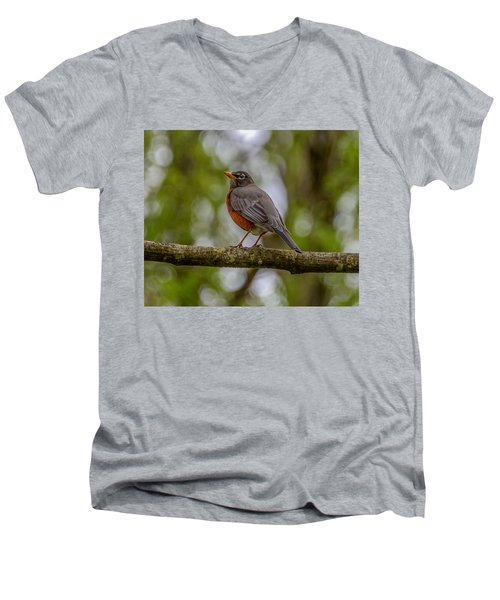 Men's V-Neck T-Shirt featuring the photograph Red Robin by Jerry Cahill