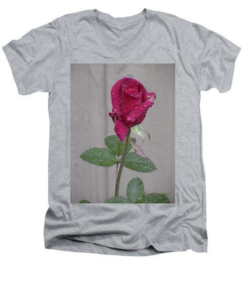 Red Rose In Rain Men's V-Neck T-Shirt