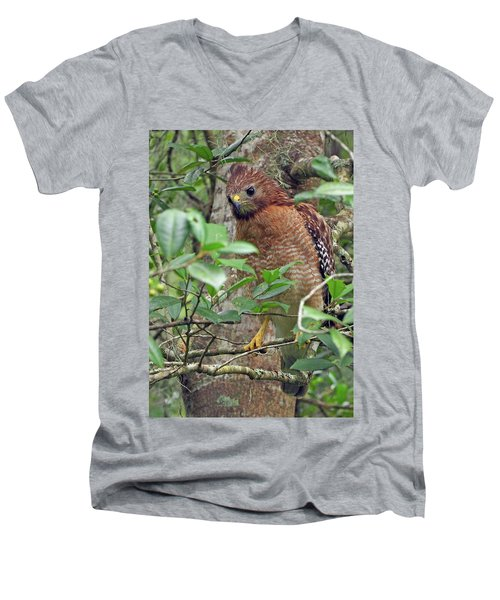 Red-shouldered Hawk Men's V-Neck T-Shirt