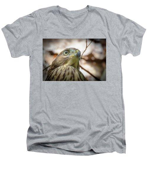 Red-shouldered Hawk Fledgling 3 Men's V-Neck T-Shirt