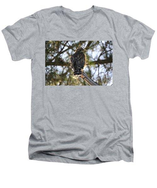 Red Shouldered Hawk Fledgling Men's V-Neck T-Shirt