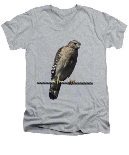 Red-shouldered Hawk Transparency Men's V-Neck T-Shirt