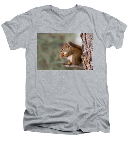 Red Squirrel Men's V-Neck T-Shirt
