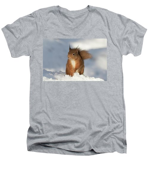 Red Squirrel In The Snow Men's V-Neck T-Shirt
