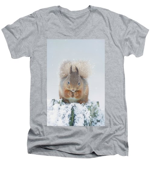 Red Squirrel Nibbles A Nut In The Snow Men's V-Neck T-Shirt