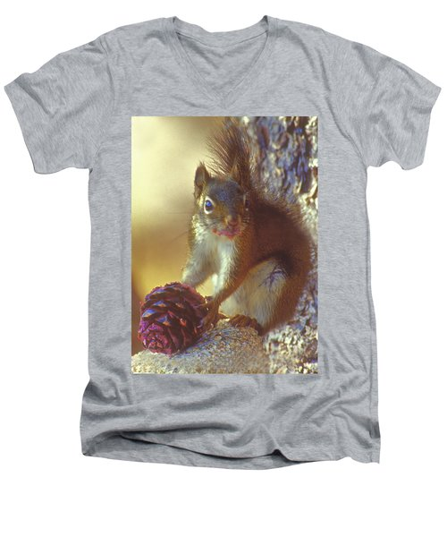 Red Squirrel With Pine Cone Men's V-Neck T-Shirt