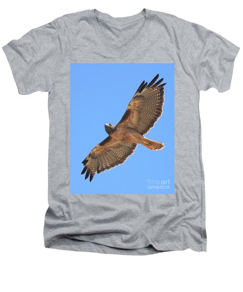 Red Tailed Hawk In Flight Men's V-Neck T-Shirt