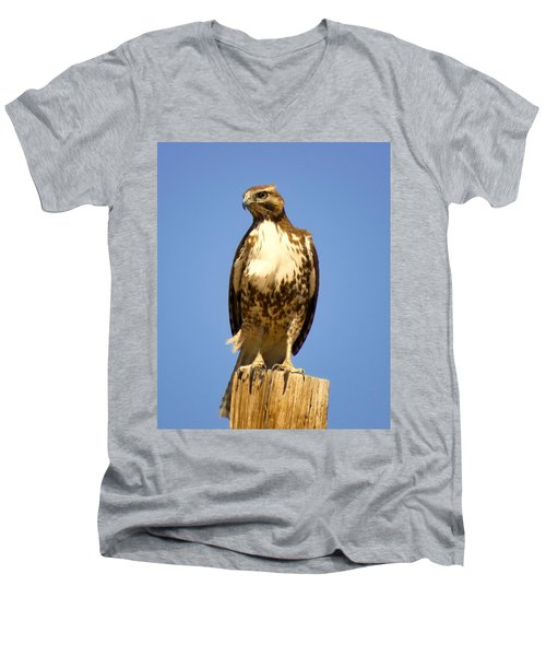 Red-tailed Hawk On Post Men's V-Neck T-Shirt