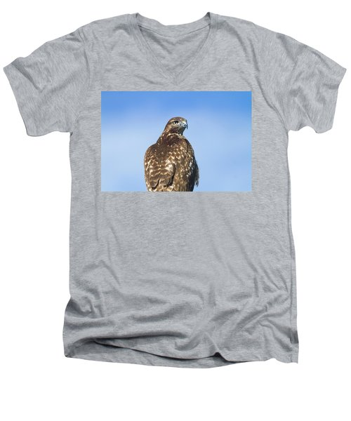 Red-tailed Hawk Perched Looking Back Over Shoulder Men's V-Neck T-Shirt