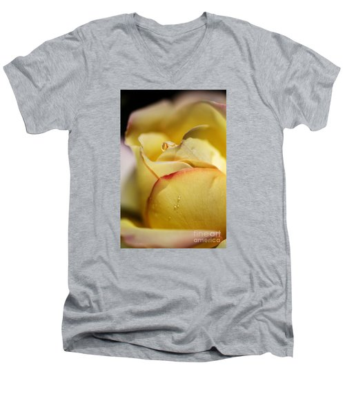Red Tipped Yellow Rose Men's V-Neck T-Shirt by Joy Watson