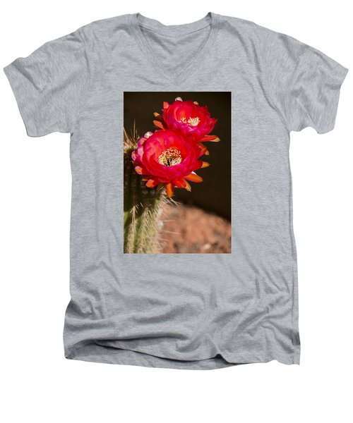 Men's V-Neck T-Shirt featuring the photograph Red Tops by Laura Pratt