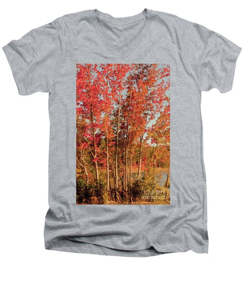 Men's V-Neck T-Shirt featuring the photograph Red Trees by Iris Greenwell