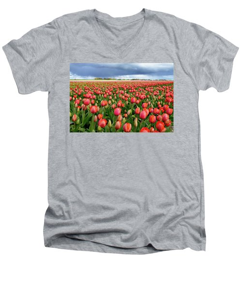 Red Tulip Field Men's V-Neck T-Shirt