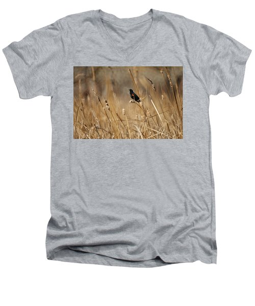 Red Winged Blackbird Men's V-Neck T-Shirt