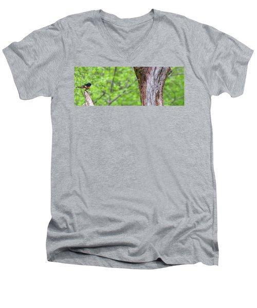 Redstart Men's V-Neck T-Shirt