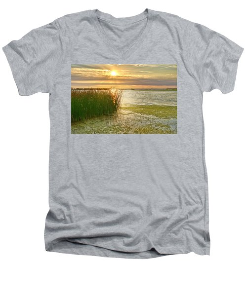 Reeds In The Sunset Men's V-Neck T-Shirt