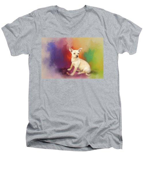 Reilly Men's V-Neck T-Shirt