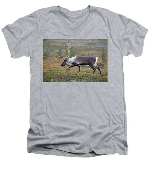 Reindeer Men's V-Neck T-Shirt
