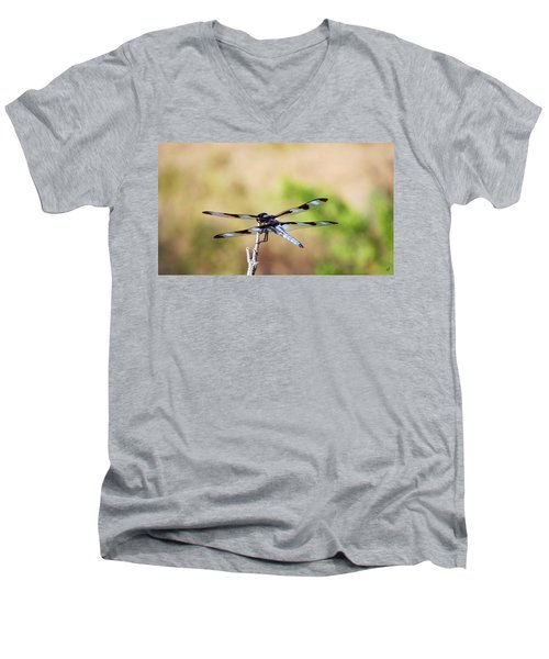 Rest Area, Dragonfly On A Branch Men's V-Neck T-Shirt