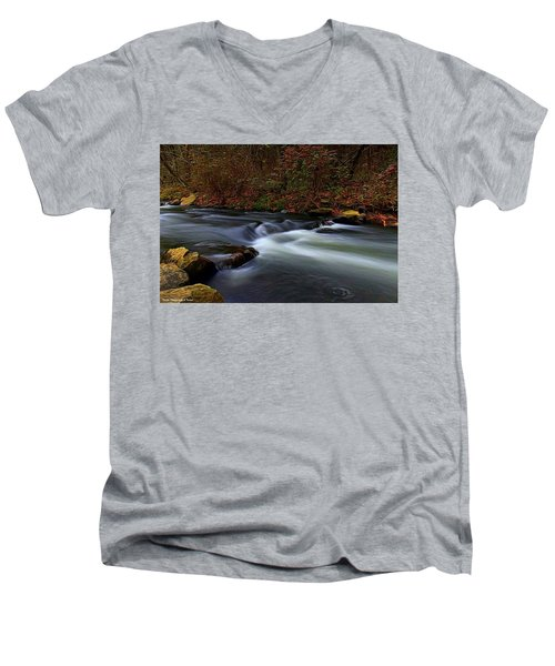 Resting By The Water Men's V-Neck T-Shirt