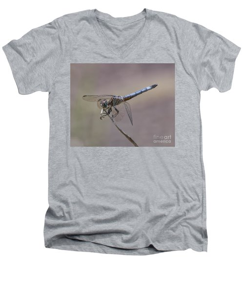 Resting My Wings Men's V-Neck T-Shirt