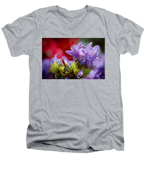 Rhododendron Bluebird Men's V-Neck T-Shirt