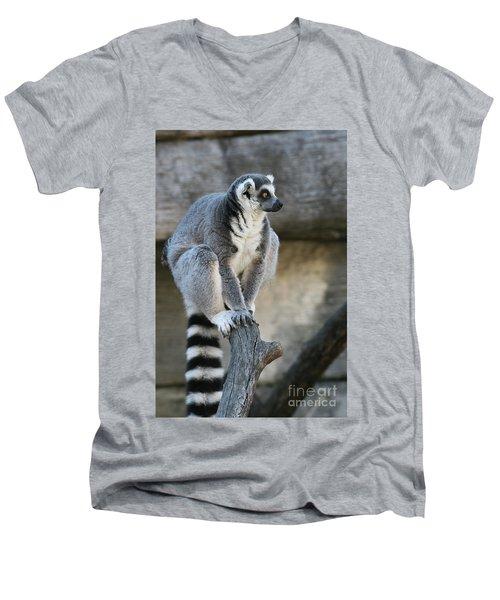 Ring-tailed Lemur #7 Men's V-Neck T-Shirt
