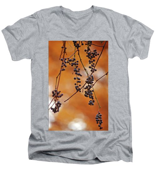 Ripe Wild Grapes  Men's V-Neck T-Shirt
