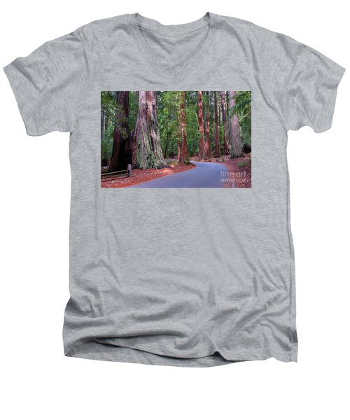 Road Through Redwood Grove Men's V-Neck T-Shirt