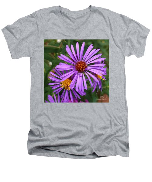 Roadside Flowers Men's V-Neck T-Shirt
