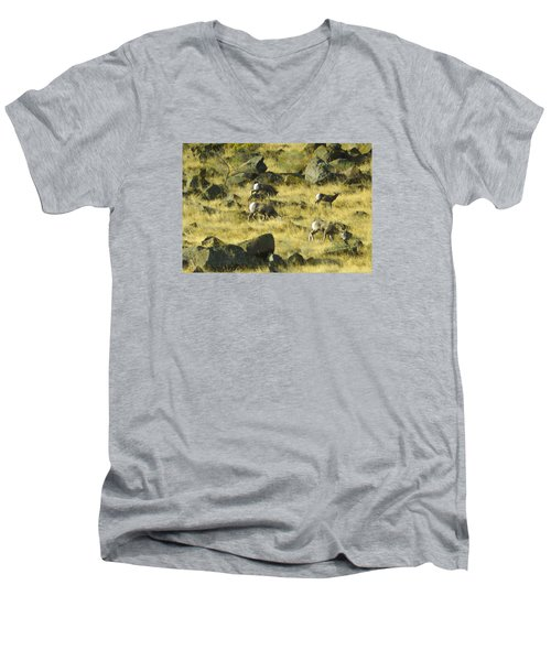 Men's V-Neck T-Shirt featuring the photograph Roaming Free by Dale Stillman