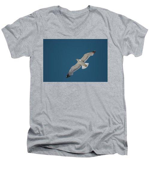 Roaming The Sky Men's V-Neck T-Shirt