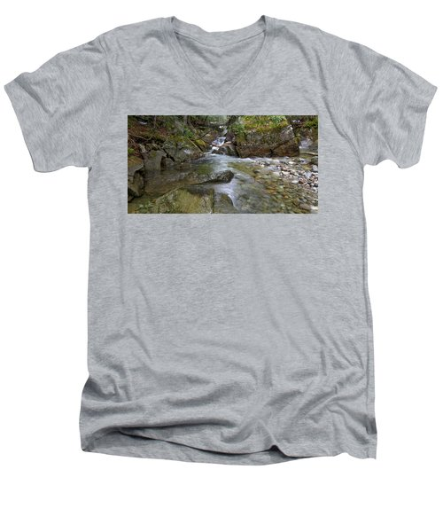 Roaring Brook Men's V-Neck T-Shirt
