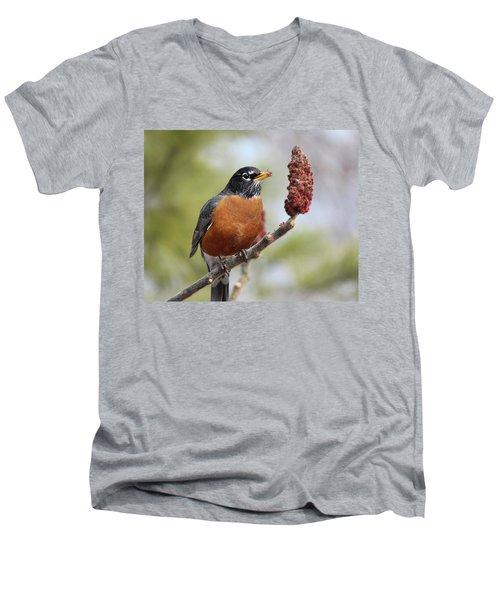 Robin And Sumac Men's V-Neck T-Shirt