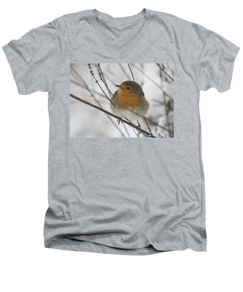 Robin In The Snow Men's V-Neck T-Shirt