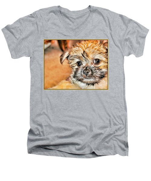 Men's V-Neck T-Shirt featuring the photograph Robin by Mindy Newman