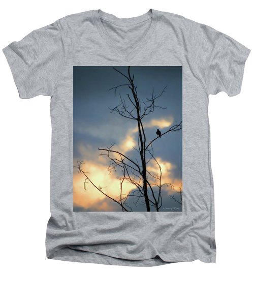Men's V-Neck T-Shirt featuring the photograph Robin Watching Sunset After The Storm by Sandi OReilly