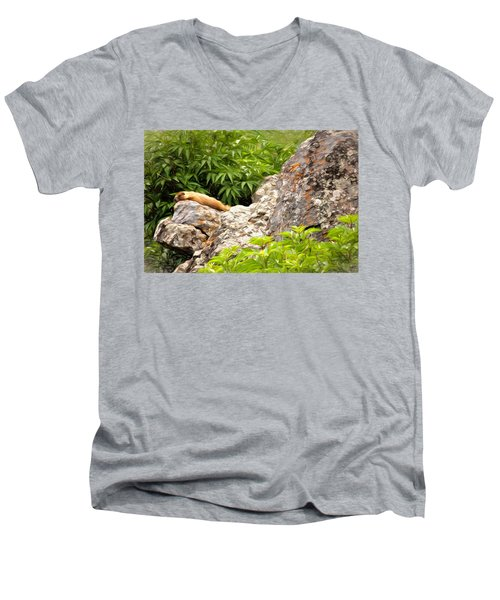 Rock Chuck Men's V-Neck T-Shirt by Lana Trussell