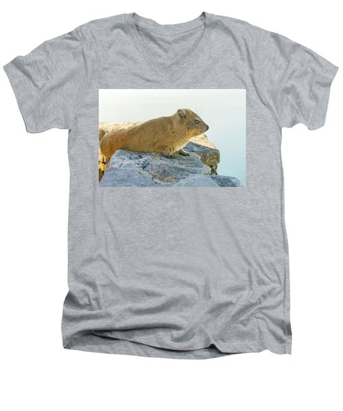 Rock Hyrax On Table Mountain Cape Town South Africa Men's V-Neck T-Shirt by Marek Poplawski