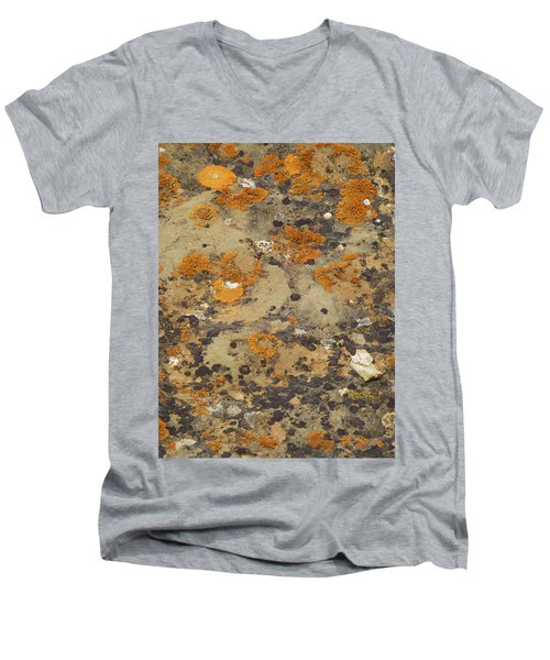 Rock Pattern Men's V-Neck T-Shirt