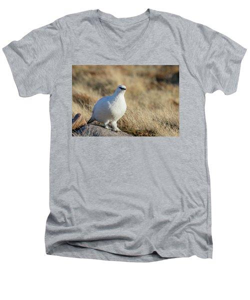 Rock Ptarmigan Men's V-Neck T-Shirt