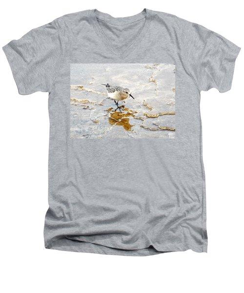 Rock Wren In Mammoth Springs Yellowstone Men's V-Neck T-Shirt