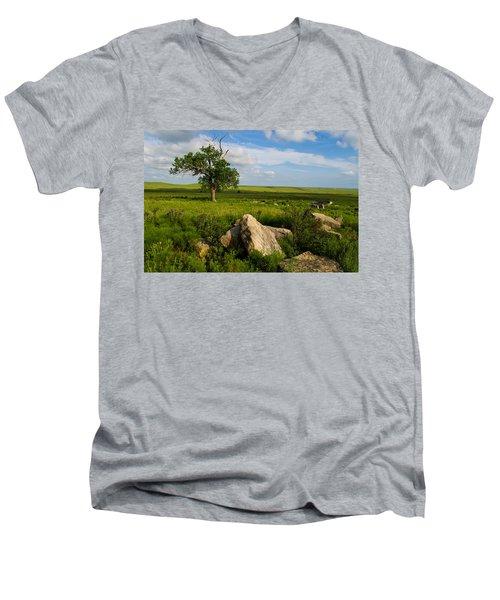 Rocks And Cottonwood 1 Men's V-Neck T-Shirt