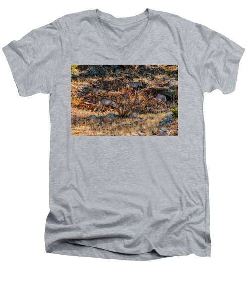 Rocky Mountain National Park Deer Colorado Men's V-Neck T-Shirt