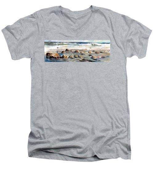 Rocky Seashore Men's V-Neck T-Shirt