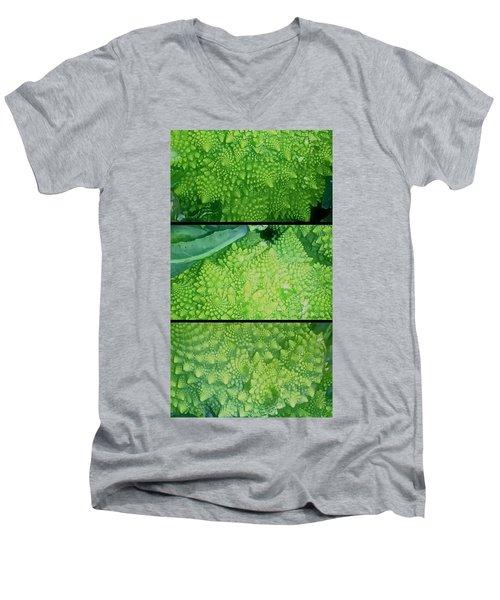Romanesco Men's V-Neck T-Shirt by Karl Reid