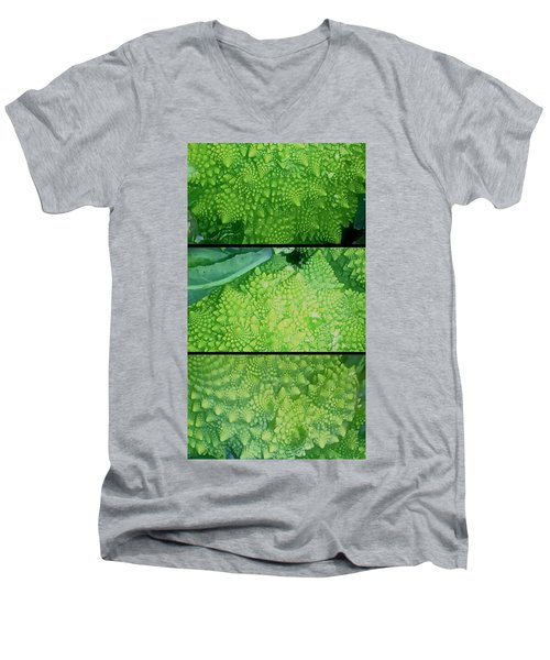 Romanesco Men's V-Neck T-Shirt