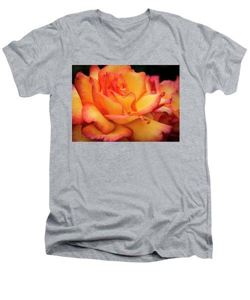 Rose Beauty Men's V-Neck T-Shirt by Jean Noren