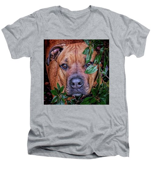 Men's V-Neck T-Shirt featuring the photograph Rosebud by Lewis Mann